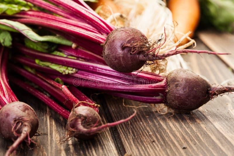 Бураки, моркови и лук-порей стоковые фотографии rf