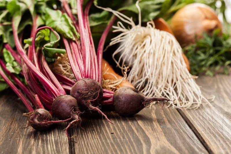 Бураки, моркови и лук-порей стоковое изображение