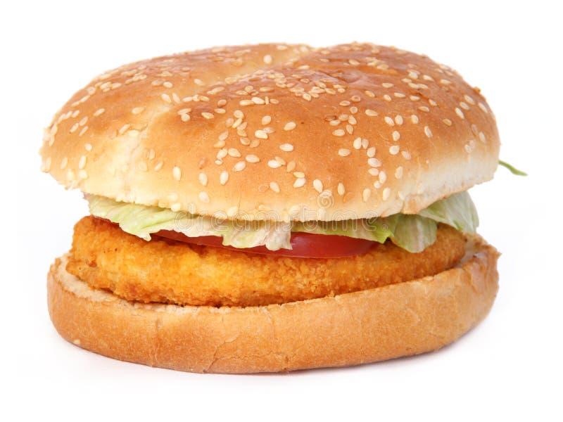 Бургер цыпленка стоковая фотография
