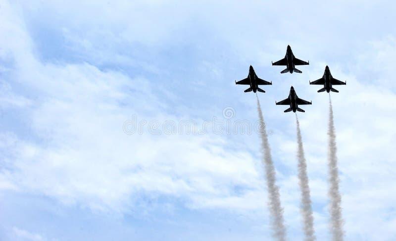 Буревестники военновоздушной силы Соединенных Штатов стоковое изображение rf