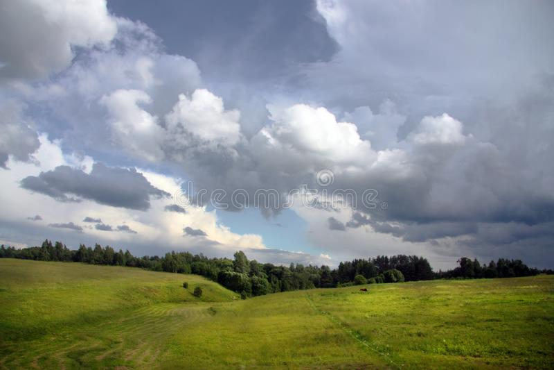 Бурное небо над солнечным полем стоковая фотография rf