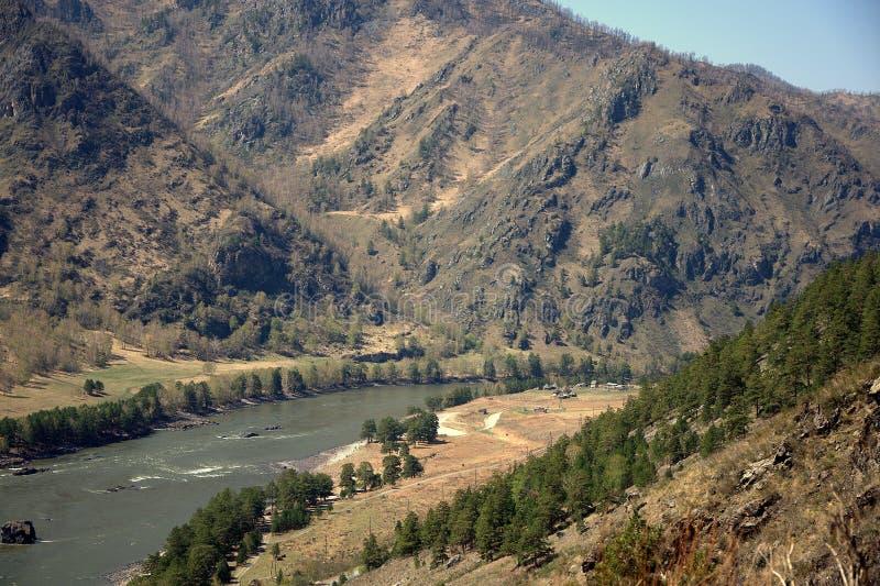 Бурное река пропуская через долину Katun, Altai, Сибирь, Россия E стоковое изображение rf