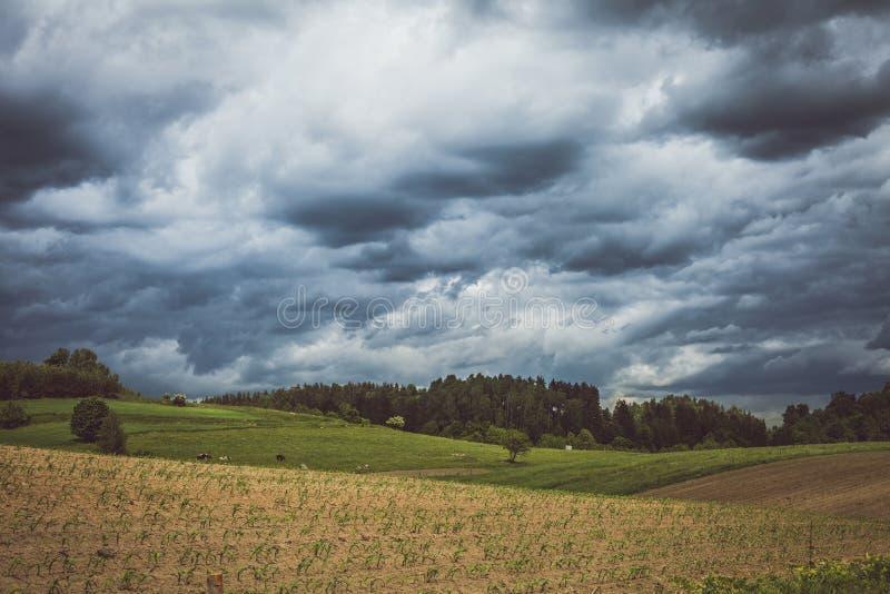 Бурное cloudscape над полями и выгоном стоковые изображения