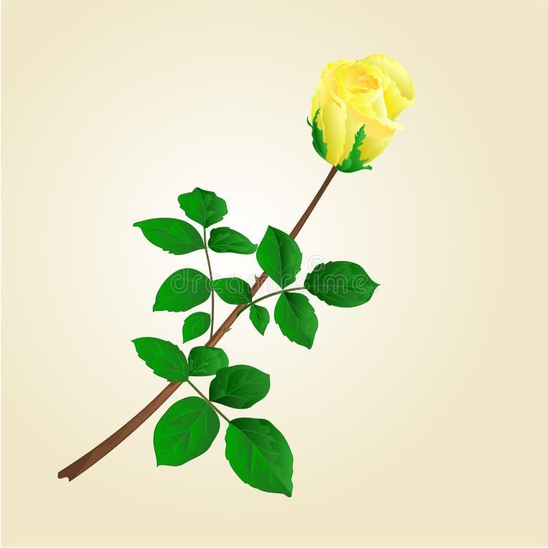 Бутон розы желтого цвета с вектором листьев иллюстрация штока