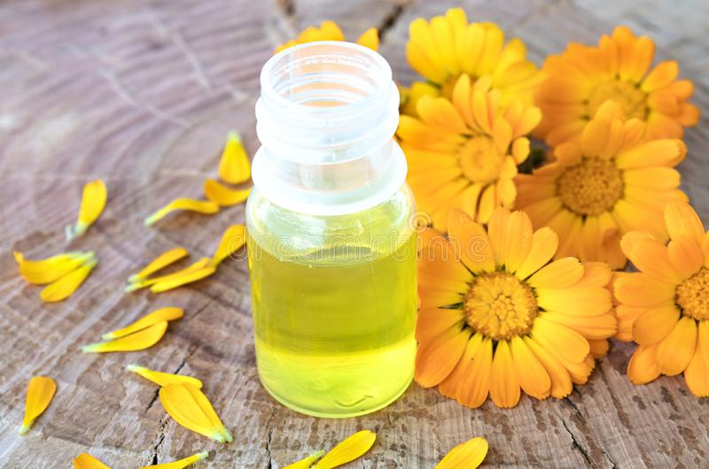 Бутылка масла calendula на деревянной предпосылке Выдержка тинктуры calendula стоковое фото