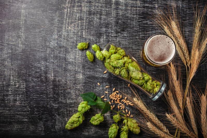 Бутылка пива с зелеными хмелями, овсом, колосками пшеницы, консервооткрывателем и стеклами с темным и светлым пивом на черной поц стоковые фото