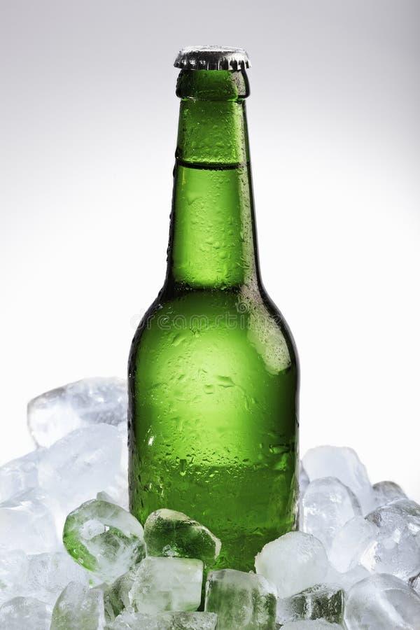 бутылка пива cubes льдед стоковое изображение