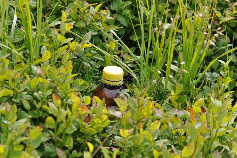 Бутылка погани на поле стоковое фото