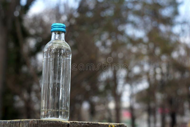 Бутылка с водой на предпосылке запачканных деревьев стоковое фото rf