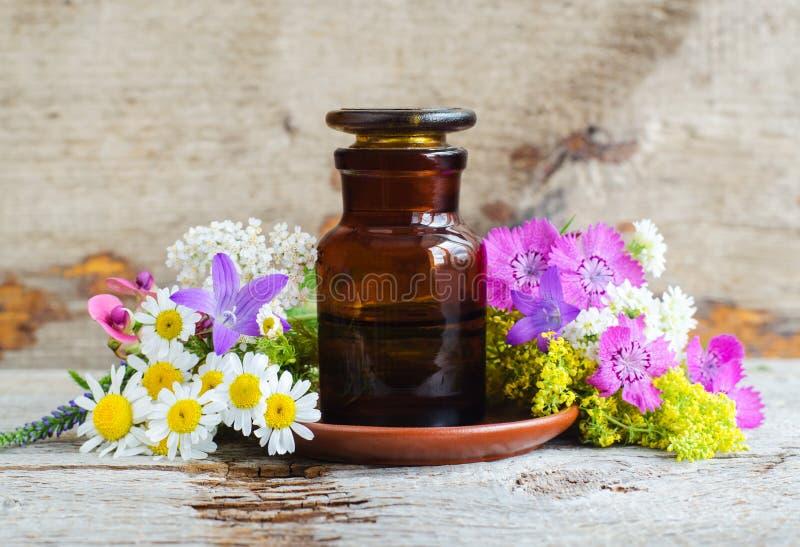 Бутылка фармации и различные полевые цветки Травяное эфирное масло тинктуры, вливание, выдержка, сироп, смесь стоковая фотография rf