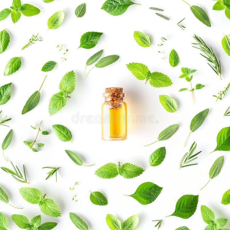 Бутылка эфирного масла с округлой формой свежих трав и spic стоковое фото