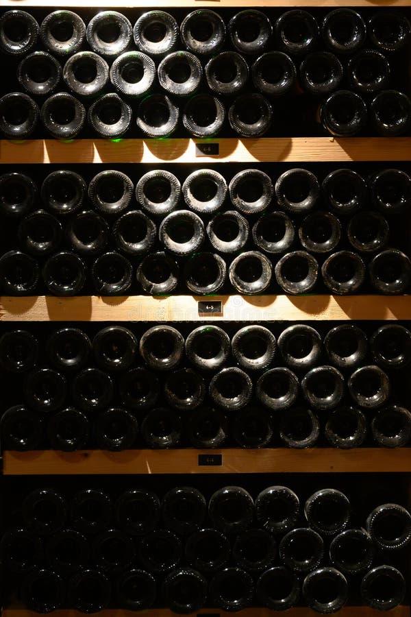 Бутылки вина в погребе стоковые изображения rf