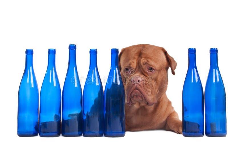 бутылки выслеживают пустое вино стоковое изображение rf