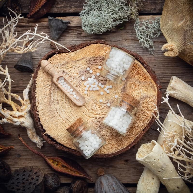 Бутылки гомеопатических глобул на деревянном пне, высушенном мхе, сухих корнях и заводах, эвкалипте и семенах лотоса стоковые изображения rf