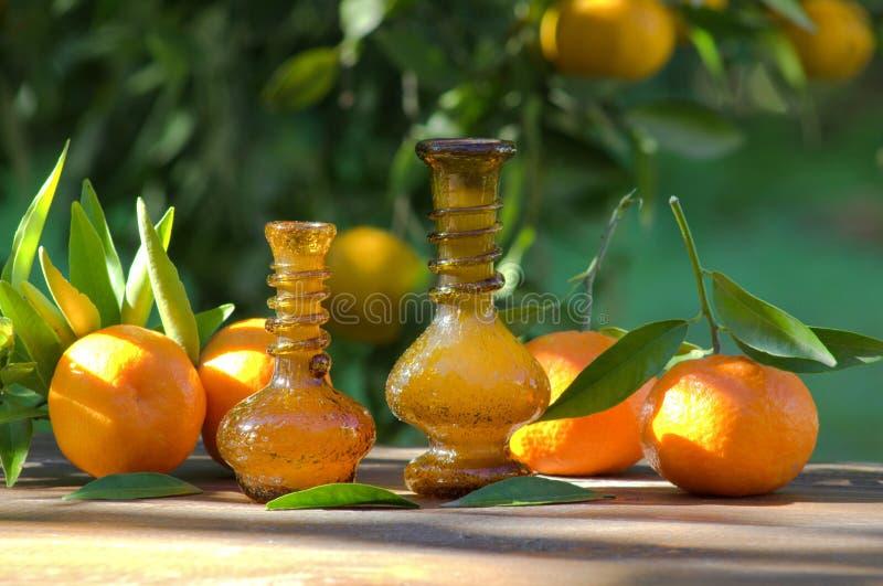 Бутылки масла мандарина стоковое фото