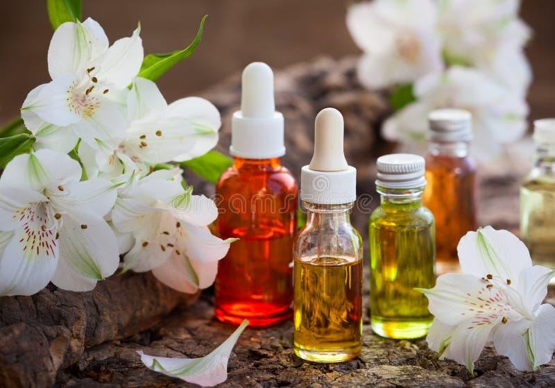 Бутылки необходимых ароматичных масел стоковая фотография