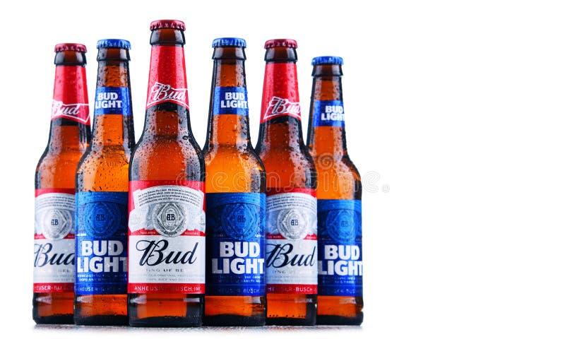 Бутылки пива бутона и бутона светлого стоковые фотографии rf