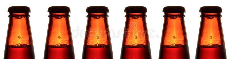 бутылки пива стоковое изображение rf