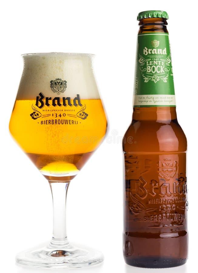 Бутылка и стекло голландского пива Lentebock бренда стоковое фото rf