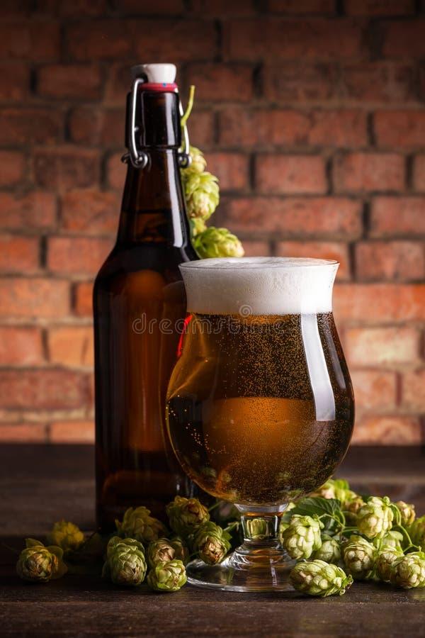 Бутылка и стекло пива стоковая фотография