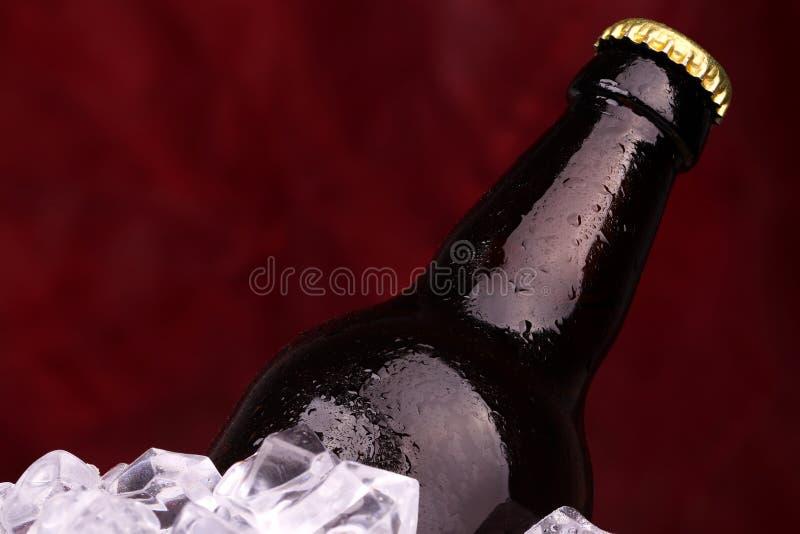 Бутылка пива в кубах льда стоковые фотографии rf