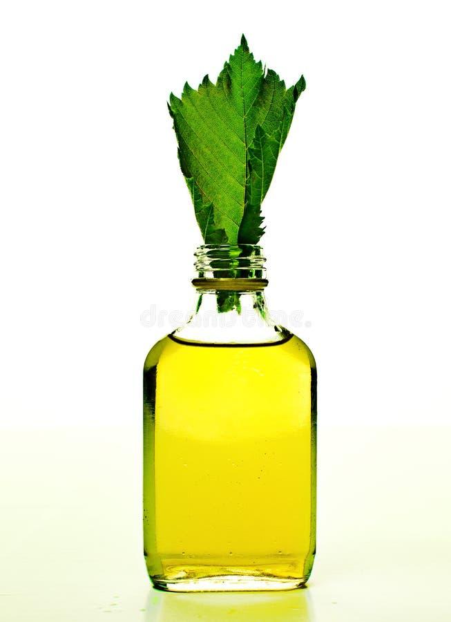Бутылка с бальзамом гомеопатии стоковое изображение