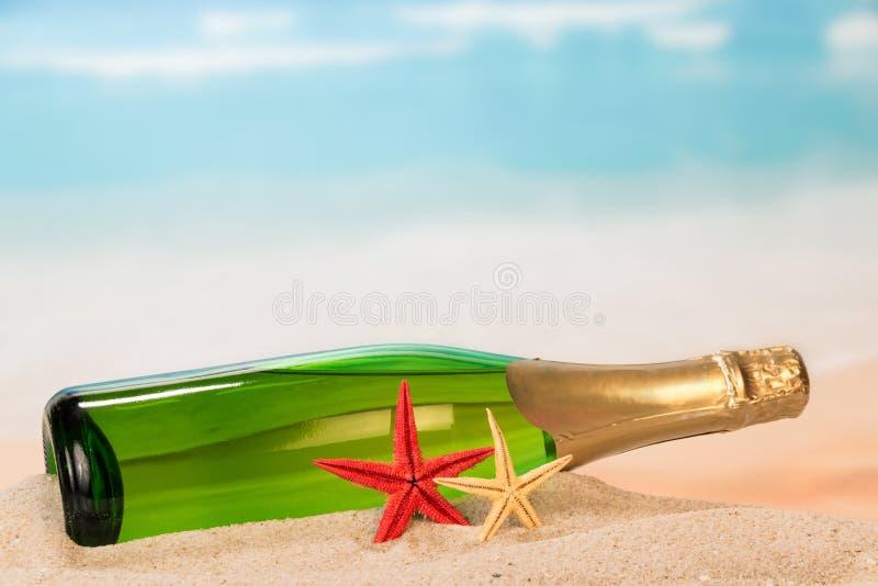 Бутылка шампанского и морских звёзд стоковое изображение rf