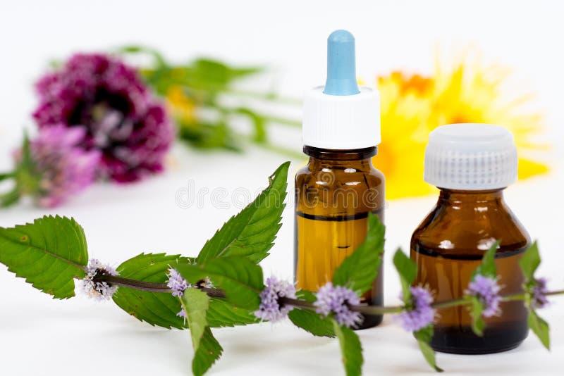 Бутылки с маслом для терапии ароматности стоковые фотографии rf