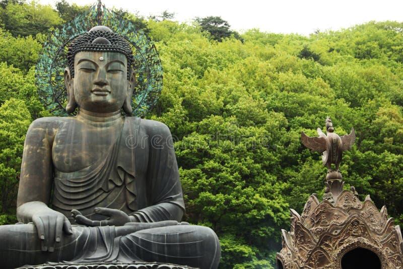 Будда в душе стоковое фото rf