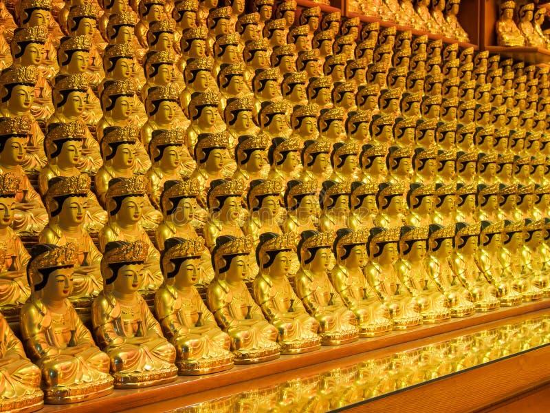 Будда отображает в ряд стоковые изображения rf