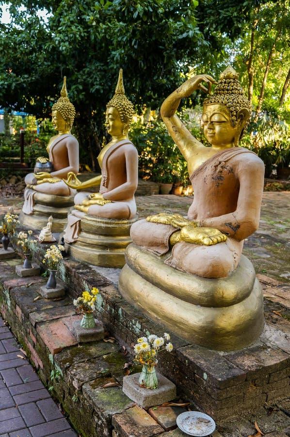 Будда уча различному Mudras на Wat Chet Yod Чиангмае стоковая фотография