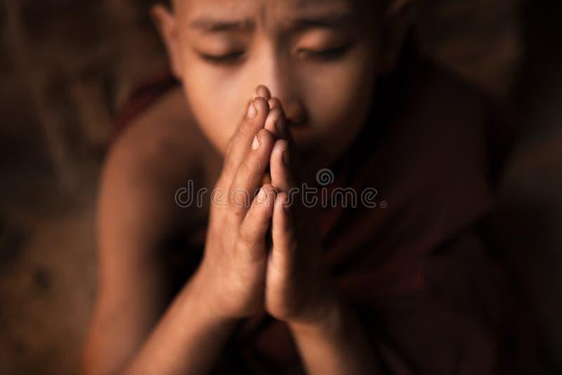 Буддийские монахи послушника моля в виске стоковые изображения rf