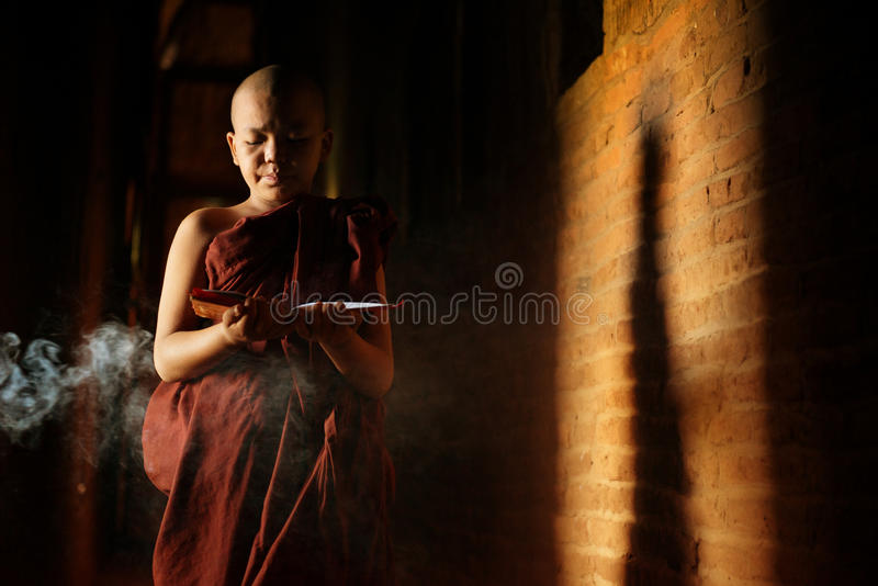 Буддийские послушники уча стоковые изображения rf
