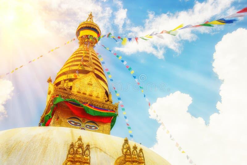 буддийское stupa Непала стоковое изображение rf