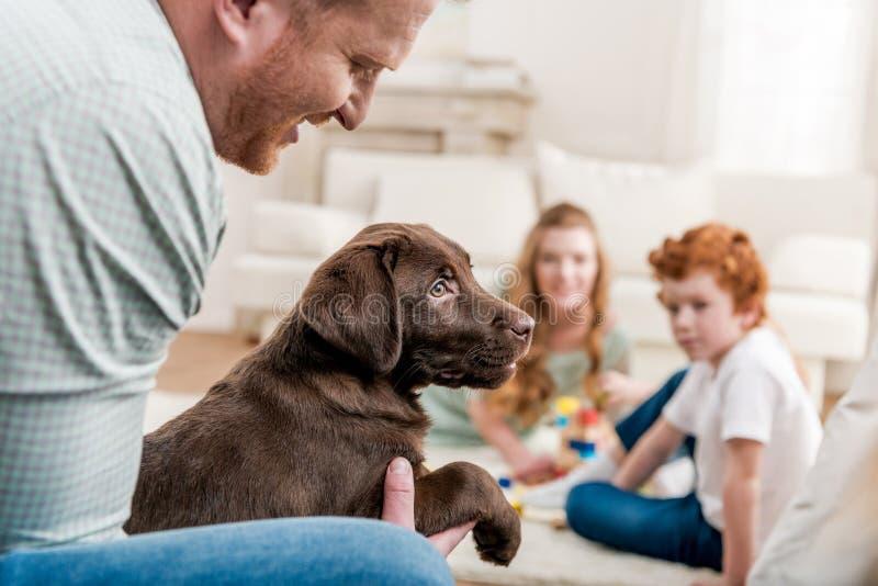 Будьте отцом держать щенка retriever labrador, счастливой семьи позади дома стоковое фото rf