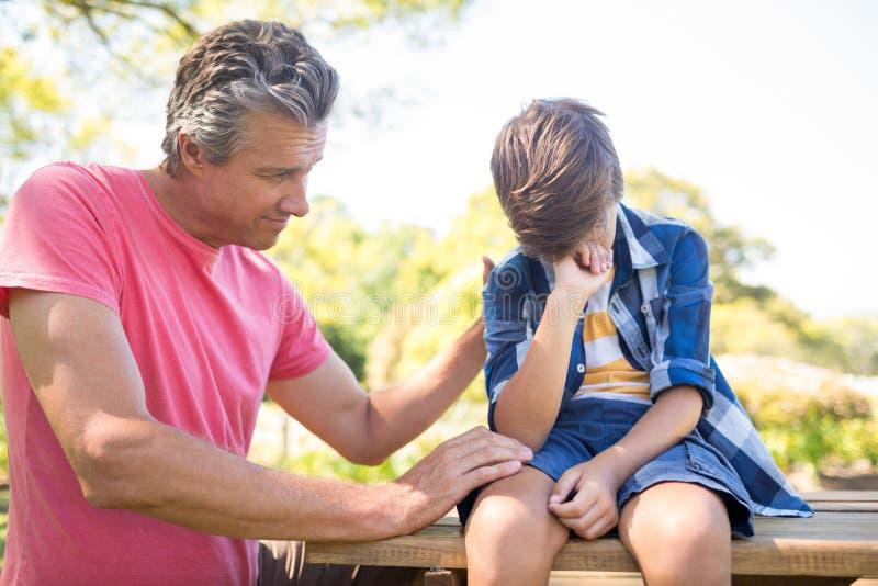 Будьте отцом утешать его сына на пикнике в парке стоковое изображение