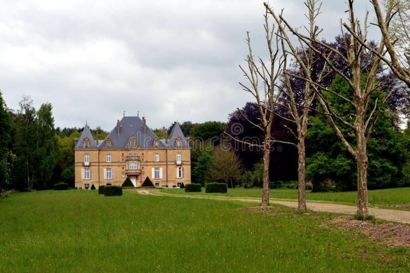 Бывший замок в лесе с путем деревьев стоковое изображение rf