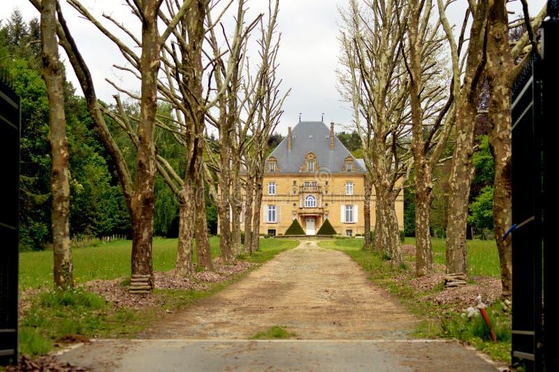 Бывший замок в лесе с путем деревьев стоковая фотография rf
