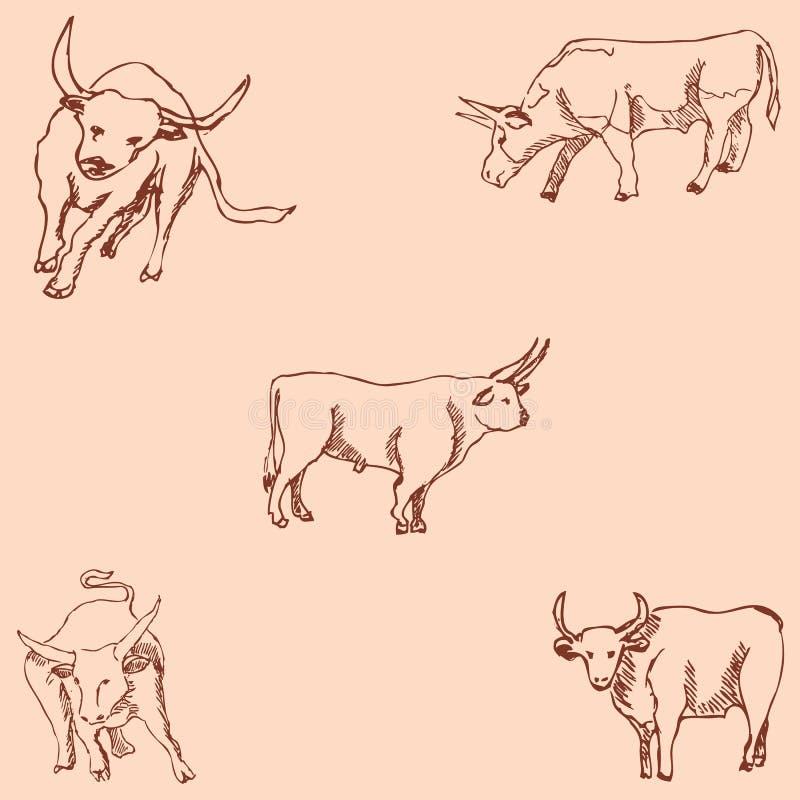 быки Карандаш эскиза Рисовать вручную Винтажные цветы вектор иллюстрация вектора