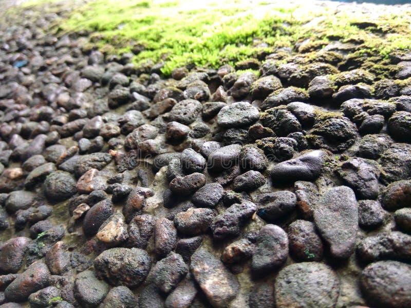 Былинный малый камень стоковые фотографии rf