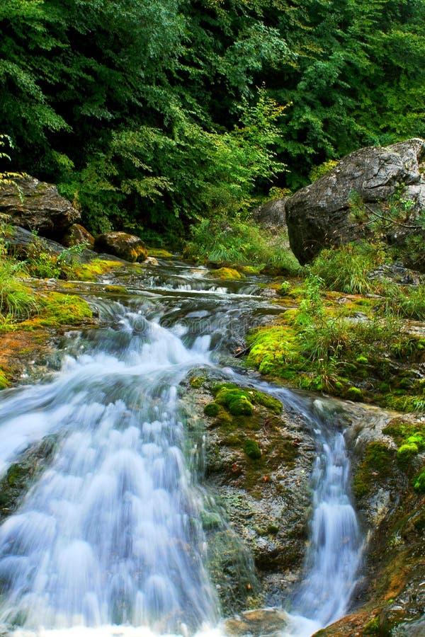 быстрое река горы стоковое фото