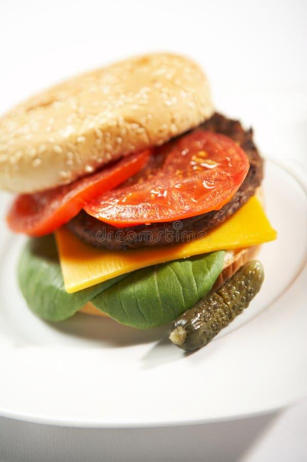 быстро-приготовленное питание бургера стоковое фото