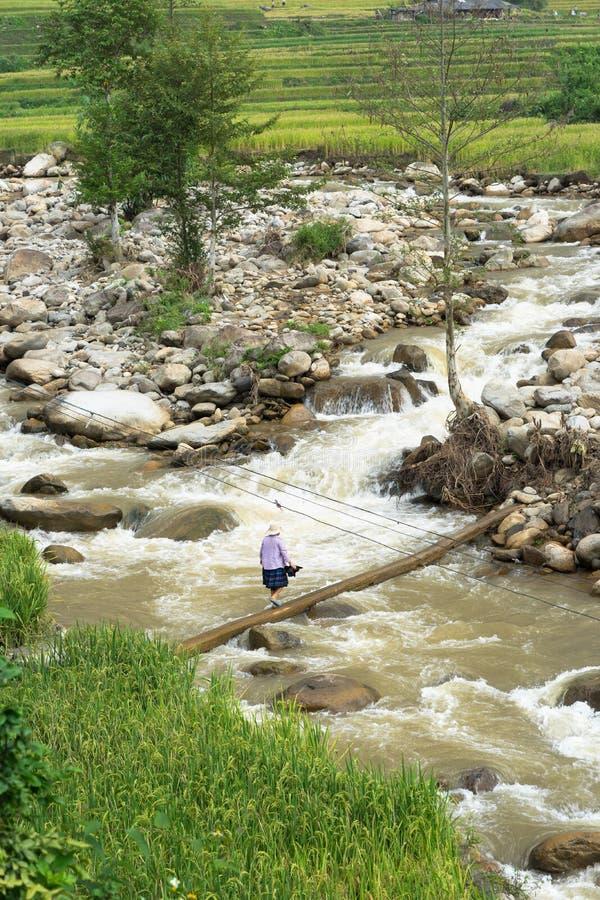 Быстрый поток воды при женщина меньшинства идя на мост сделанный мертвого дерева стоковые изображения