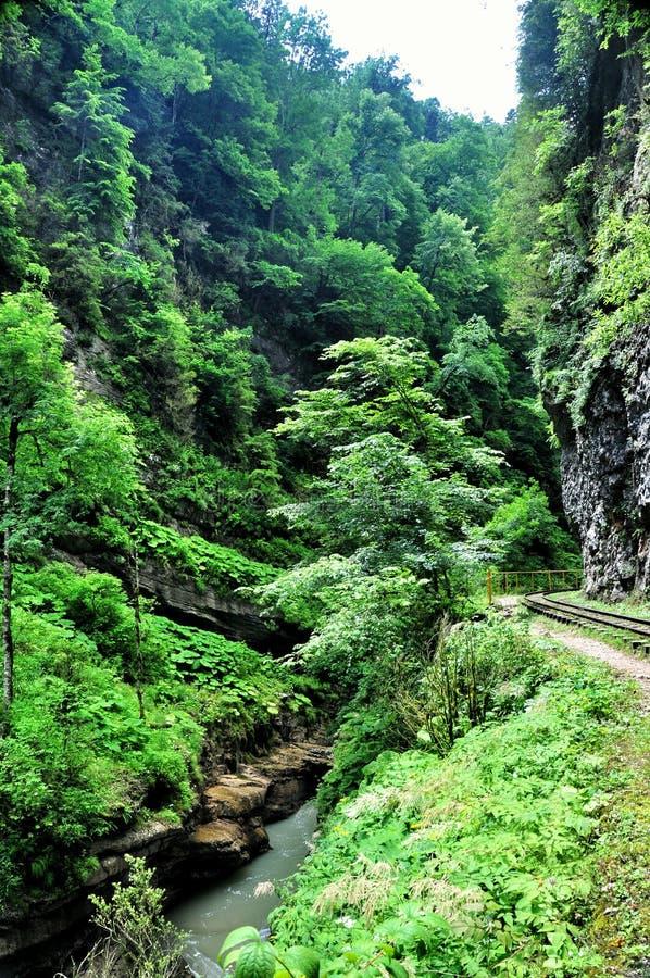 Благоустраивайте реку горы с большими утесами на береге стоковая фотография rf