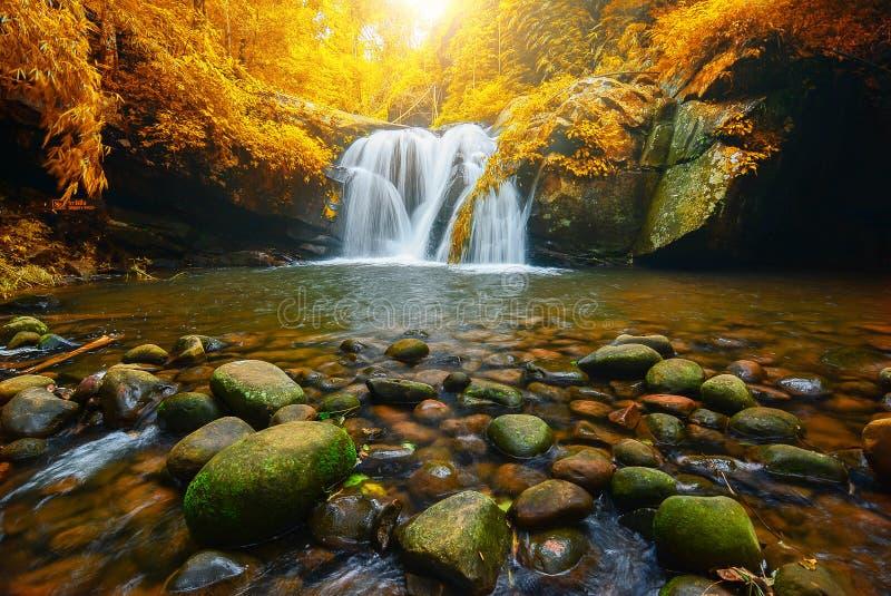 Благоустраивайте фото, водопад Phu Soi Dao с деревьями листьев желтого цвета, стоковая фотография rf