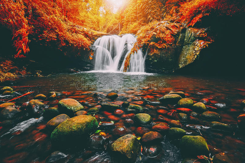 Благоустраивайте фото, водопад Phu Soi Dao с деревьями листьев желтого цвета, стоковое изображение