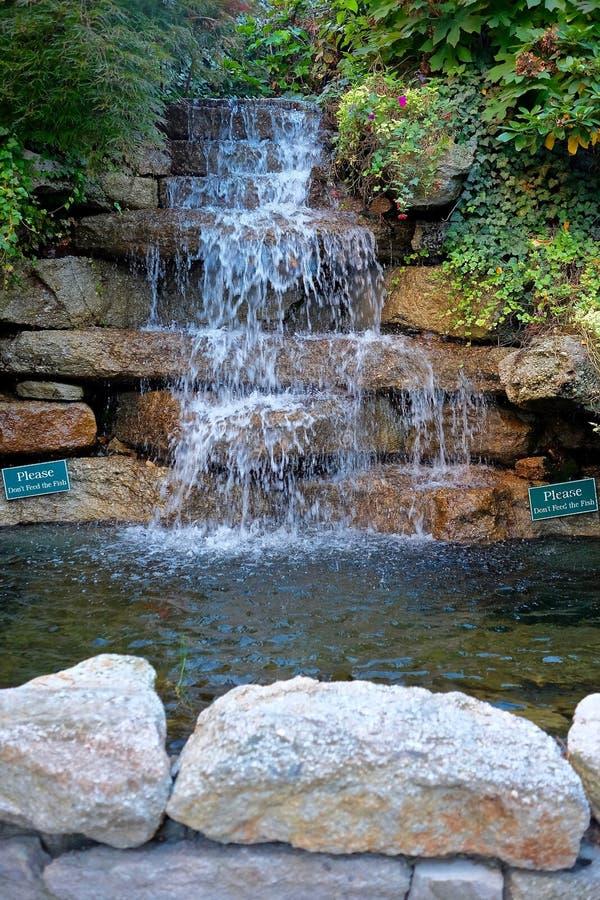 Благоустраивать водопада и пруда стоковое фото rf
