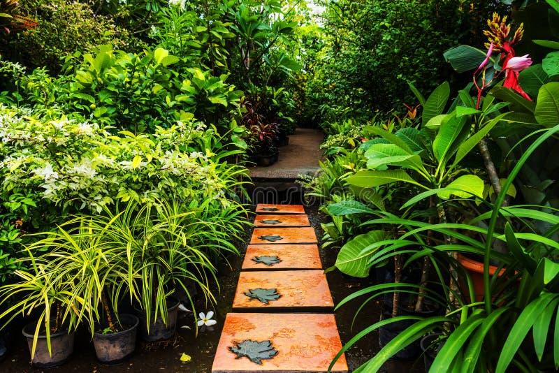 Благоустраивать в саде. стоковая фотография rf