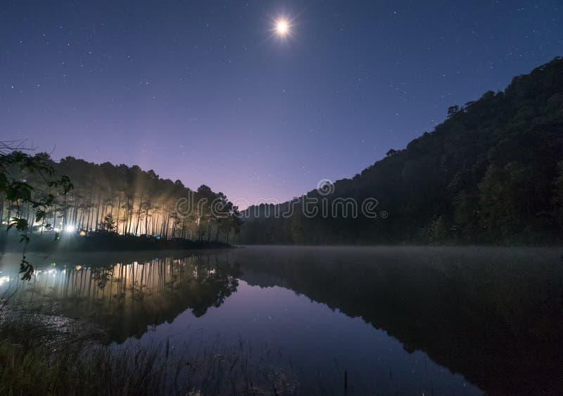 Блеск света соснового леса с луной на резервуаре на зоре стоковое фото rf