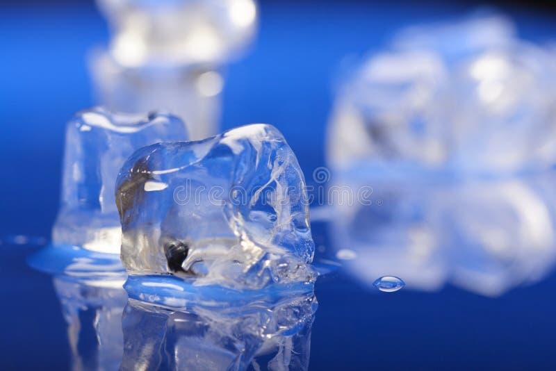 близкие кубики морозят вверх стоковая фотография rf